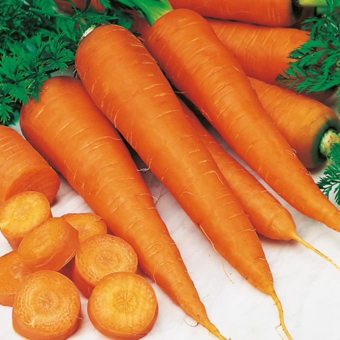 Как получить морковь на семена