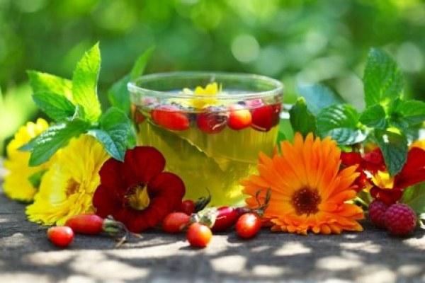 Как правильно заваривать травяные чаи