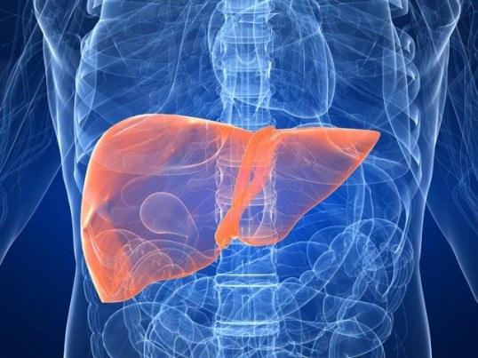 Какими изменениями в организме характеризуется гепатит