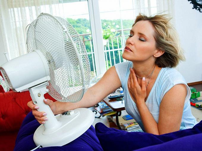 Во время летней жары все органы и системы организма находятся в стрессовом состоянии и работают на пределе своих возможностей