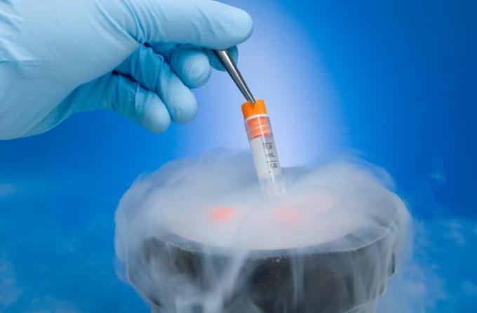 Как долго хранятся эмбрионы для ЭКО