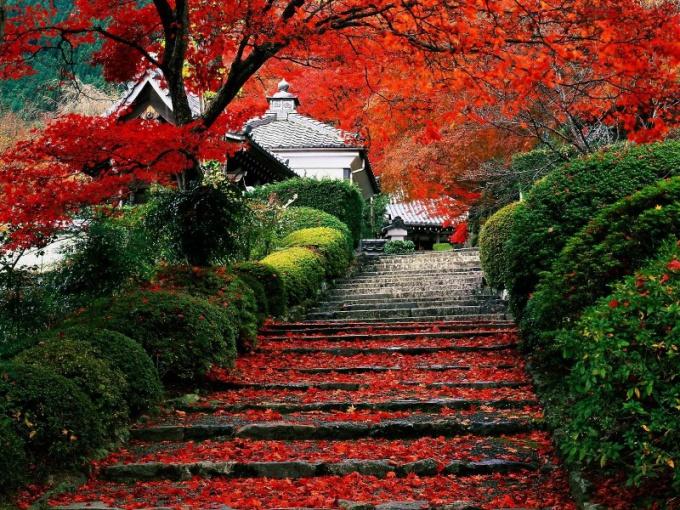 Самые красивые города Японии