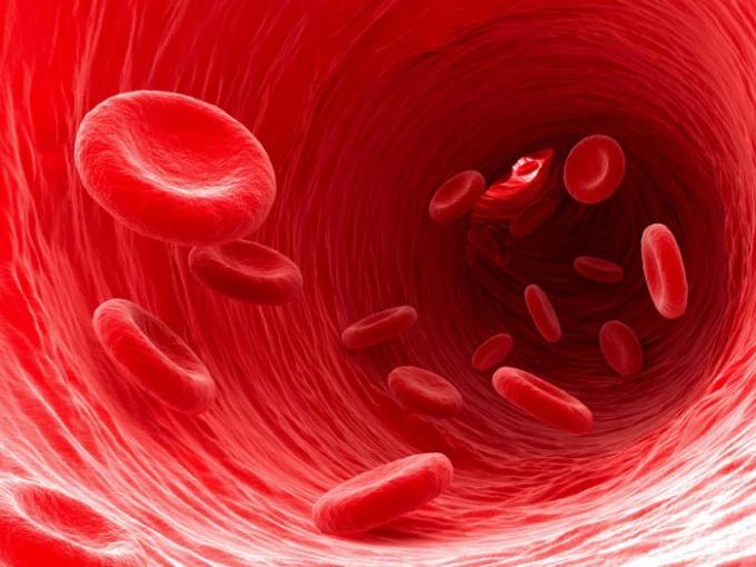 Что может стать причиной кровотечения при беременности