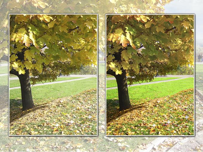 Обработка улучшает качество изображения