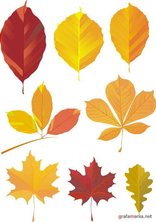 Техника окрашивания листьев деревьев красками