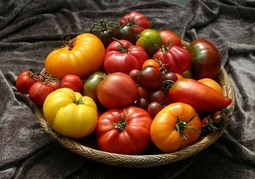 Помидоры: как выбирать семена