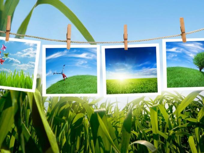 Современная экология как наука
