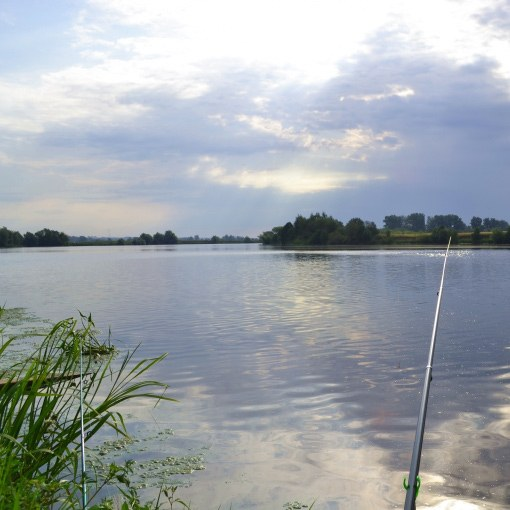 Как рыбалка под Москвой