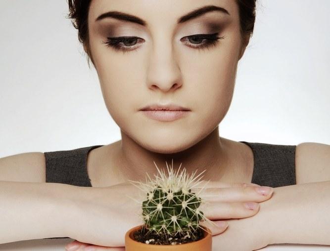 Как уберечь кактус от загнивания