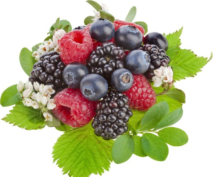 Any berries lose weight
