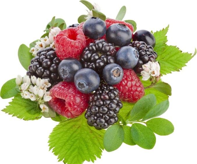 От каких ягод худеют