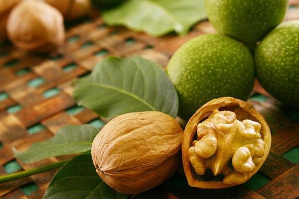 Как употреблять грецкие орехи от болезни