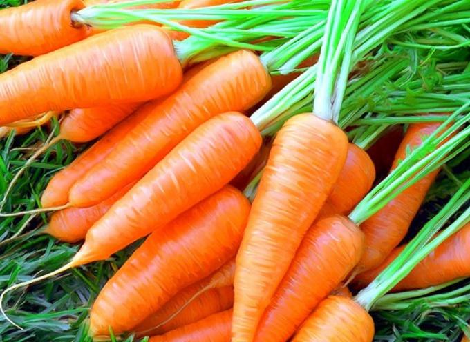 Как припустить морковь