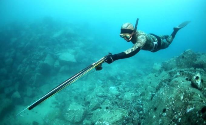 Как вести подводную охоту