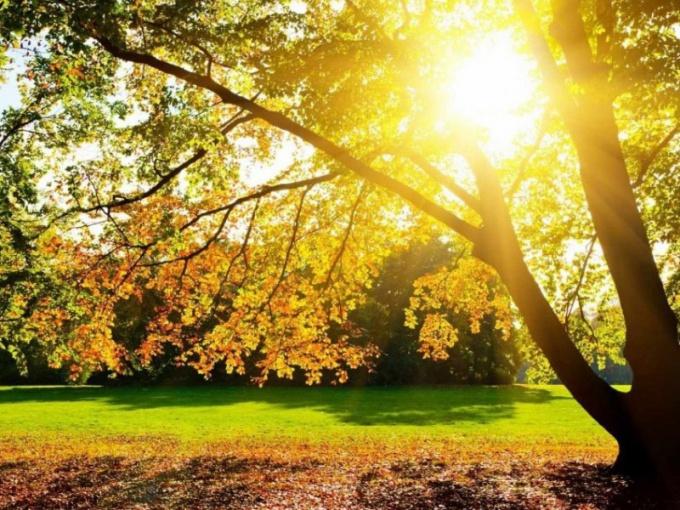 Как Солнце влияет на Землю