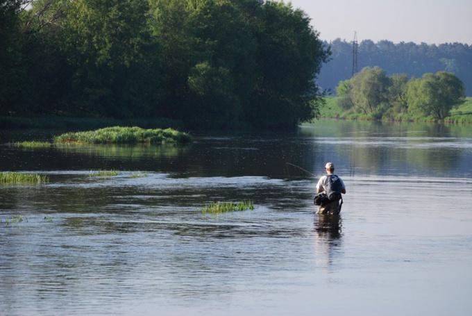 Рыбалка на реке