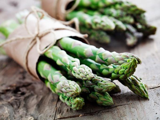 Как вырастить спаржу из семян