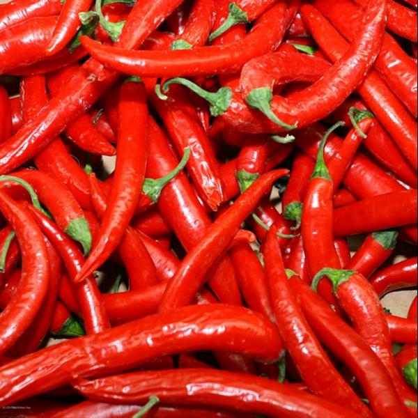 Употреблять перец чили в пищу необходимо крайне осторожно