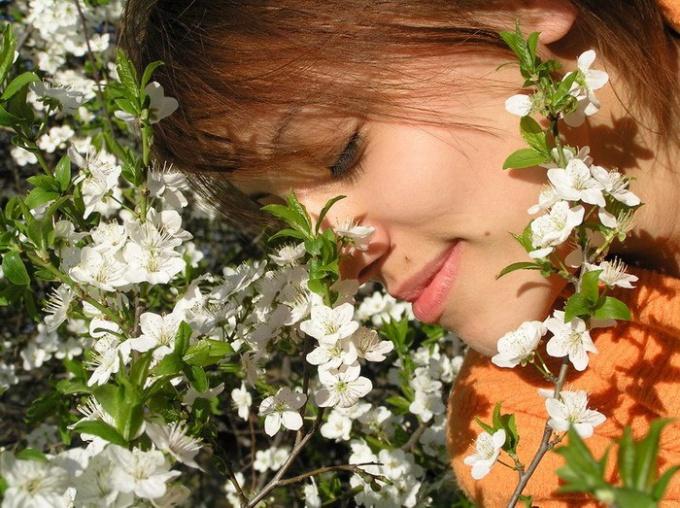 Как подобрать подходящий аромат?