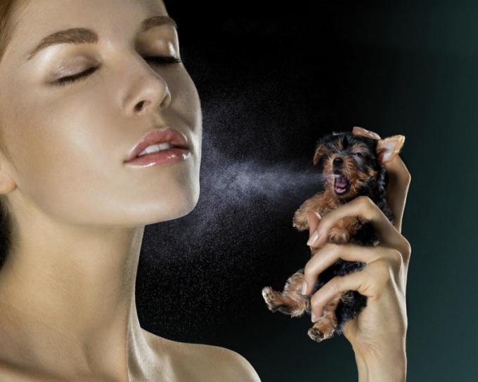 Модный женский парфюм