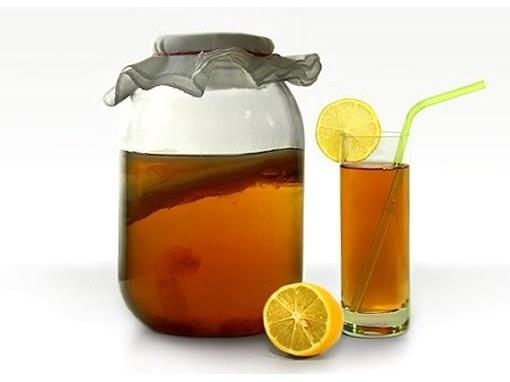 Чайный гриб: польза и противопоказания