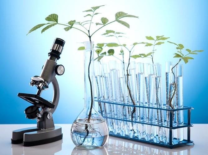 Этапы научного познания