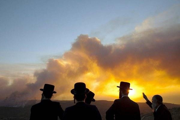 Чтобы понять друг друга, жителям Израиля нужно знать иврит или русский