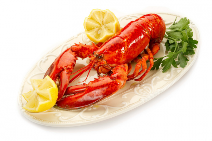 That delicious lobster or spiny lobster?