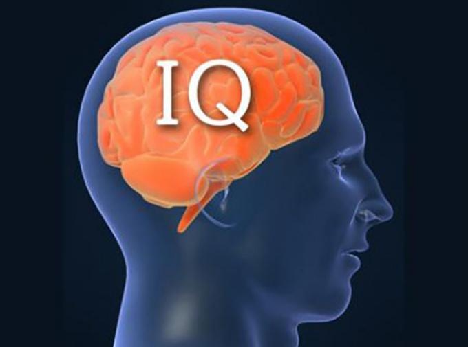 Объективны ли тесты на IQ?