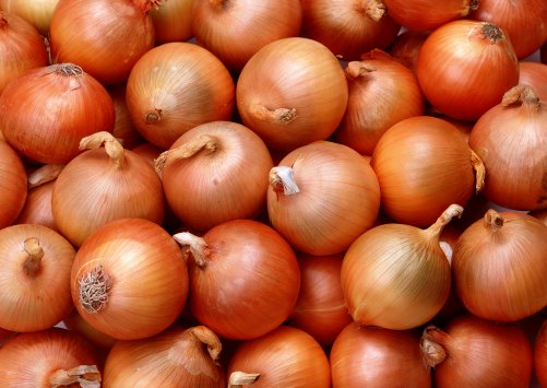 Why you should not throw away onion peels