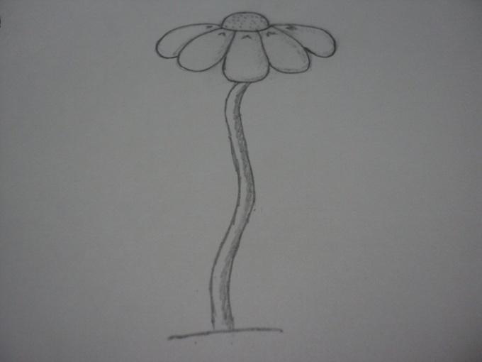 рисунок ромашки карандашом