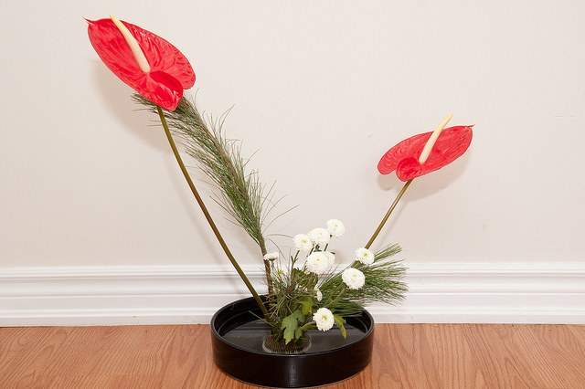 How to make a flower arrangement with your own hands
