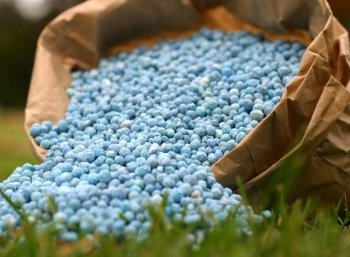 Минеральные удобрения дают растениям необходимые питательные элементы