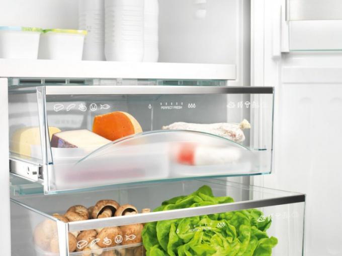 продукты, которые должны быть всегда в холодильнике