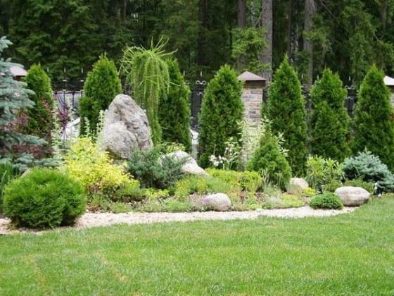 Туи отлично сочетаются с кустарниками и небольшими деревьями