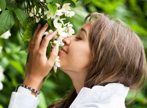 Некоторые растения являются настоящими ароматизаторами для сада