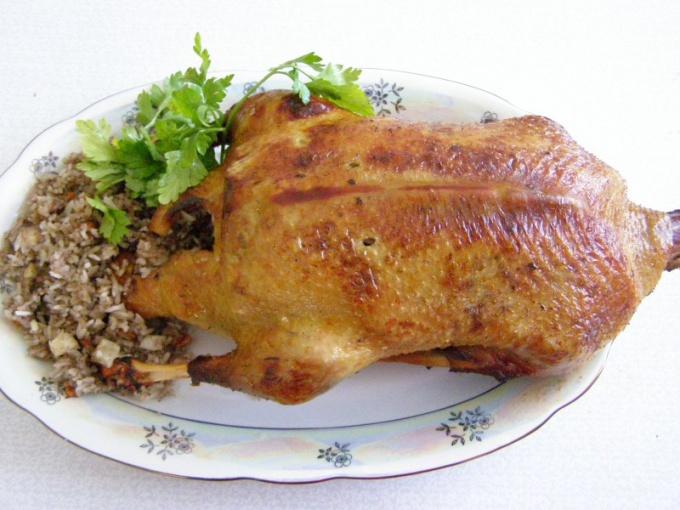 Блюда из дикой утки