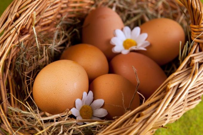 Почему в яйце могут быть два желтка