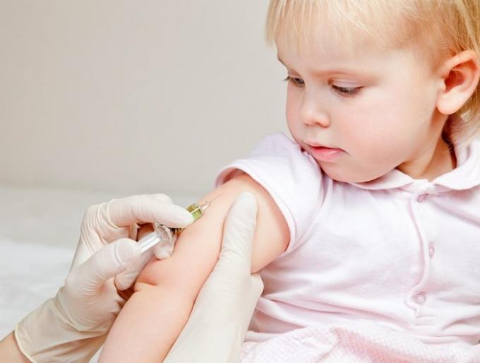 Долго ли держится температура после прививки АКДС
