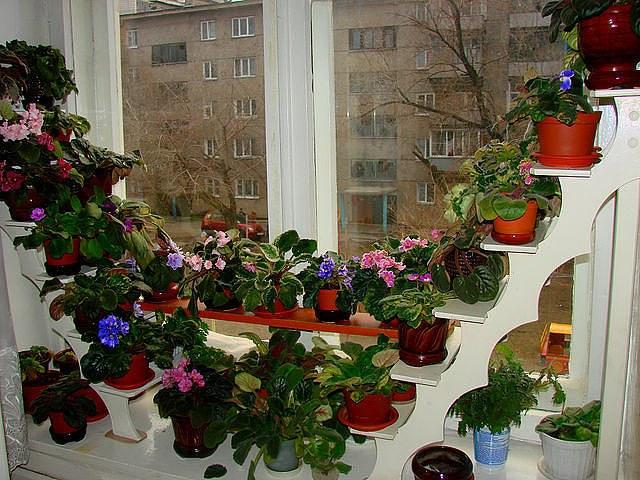 Эффектная стойка для цветов украсит любое помещение