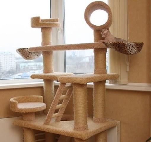 Игровой комплекс для котов своими руками