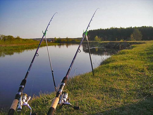For successful fishing you can use different types of fishing rods