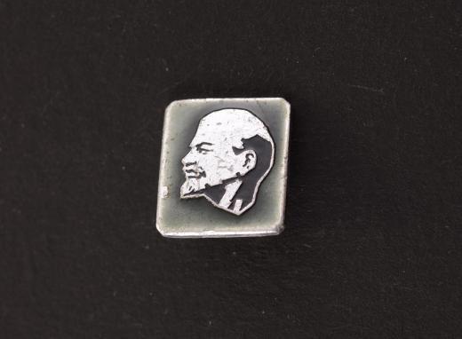 Были ли у Ленина дети: немного биографии