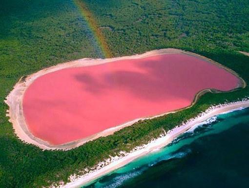 Где расположено озеро, вода в котором розового цвета