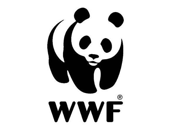 Как называется крупнейшая организация в мире по защите природы и почему