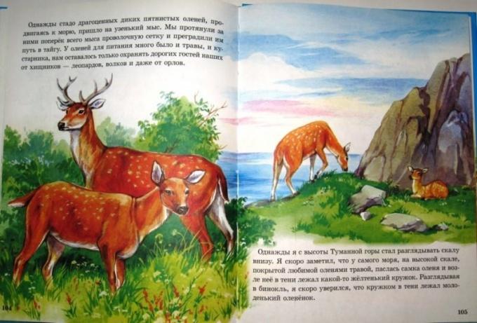 Рассказ о животном