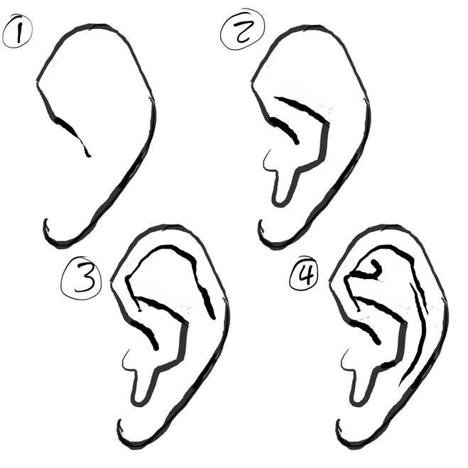 Рисуем человеческое ухо карандашом