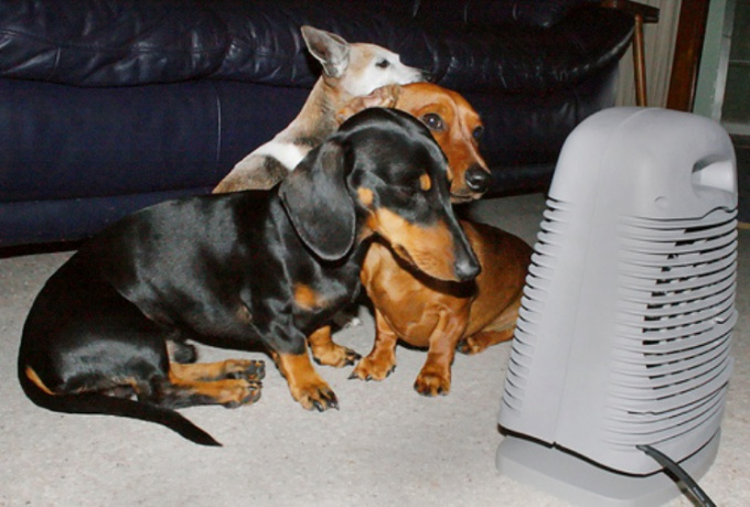 Как сберечь тепло в доме