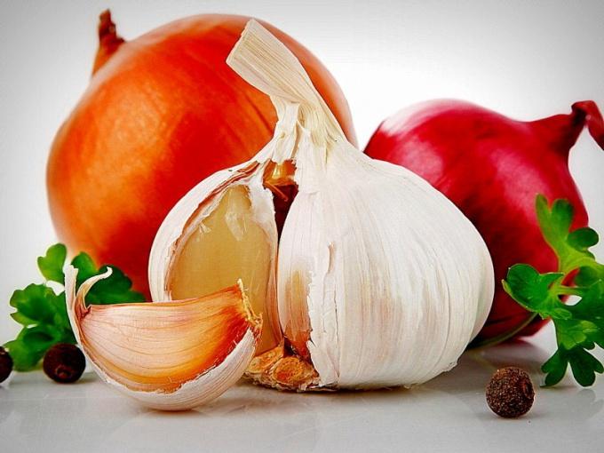 Чеснок и лук – самые известные и общедоступные природные антибиотики