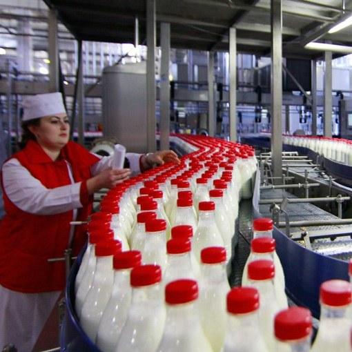 Что такое восстановленное молоко
